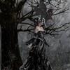 darkmoonfairy