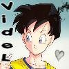 Videl-Power