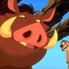 Timoon-Pumbaa