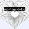 montage-b-log