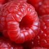 american-raspberry