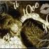 ii-l0ve-y0u-bbey