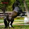 love-cheval7