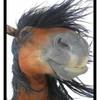 horse-mania30