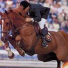 chevaux055