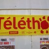 just-telethon2008