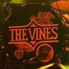 x-the-vines-x