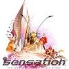 night-sensation-222