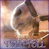 Pix-H3ll-s-new-world