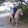 my-cheval-et-my