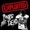punk-attitude666