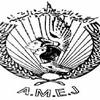 amej2008