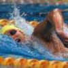 fan2ianthorpe
