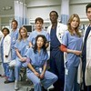greys-anatomy500