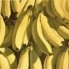 banana-play