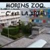 mor1zoo