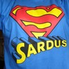 SarduS2008