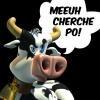 vache-en-folie3925