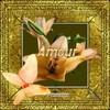 lotus593
