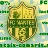 nantais-canaris