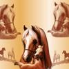 chevaux13161