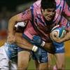 brisou-rugby-2