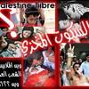palestine-liibre