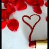 love-chaton-love