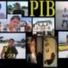 P-I-B29