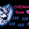 cokinou05