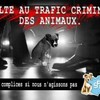 mal-etre-animaux