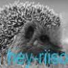 hey-riison