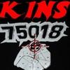 kinsxv3