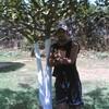 anasgattuso2008