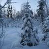 Laponie-Muonio