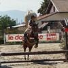 horse-ninon