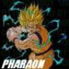 pharaon55