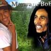 bob-hard-style
