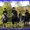 Craazy-frogs