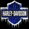 harley1955