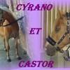 cyrano-castor