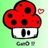 Gobe-ton-Mushroom