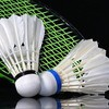 badminton-allonnais