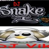 Dj-VIk-And-Snake