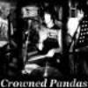 Crowned-Pandas