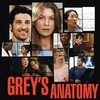 greys-anatomy-greys