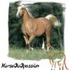 horse0o0passion