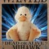 mihawk27