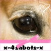 x-4sabots-x