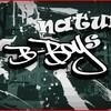 n4turel-bboys
